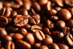 Close-up of brown roasted coffee beans. Close-up background of brown roasted coffee beans. Organic concept Stock Image