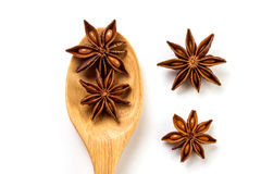 Close up the brown star anise spice in wooden spoon isolated on Royalty Free Stock Images