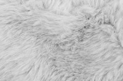Textured synthetical fur background. Close up of brown synthetical fur textured background Royalty Free Stock Photos