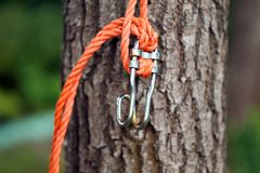 Close up of brown tree with rope. Royalty Free Stock Images