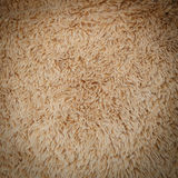Close-up brown wool fluffy fur texture Stock Image