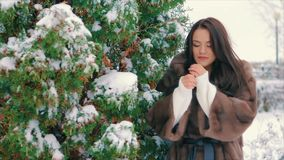 Brunette stylish girl near snow covered trees in winter, in brown fur coat slow motion. Close-up of brunette stylish girl with bright makeup, near Snow covered stock footage