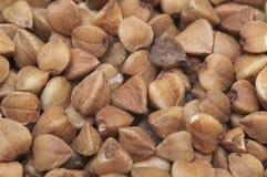 Close-up of buckwheat. Grain Stock Photos