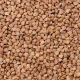 Close-up of buckwheat groats background Stock Photography