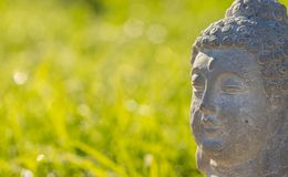 Buddha head statue, close-up with blurred green background. Close-up of buddha head statue with green grass background, copy space royalty free stock photos