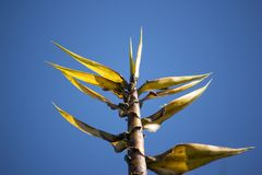 Bug and Yellow Bamboo tree Stock Images
