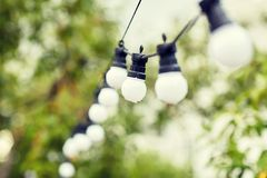 Close up of bulb garland hanging in rainy garden Royalty Free Stock Image