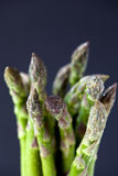Close up of a bunch of asparagus Royalty Free Stock Images
