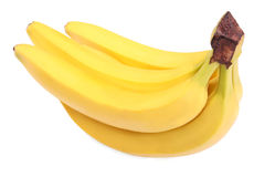 A close-up of a bunch of bright bananas. Juicy and ripe bananas isolated on a white background. Exotic, tropical and sweet fruits. royalty free stock images