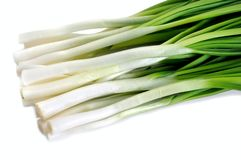 Close-up of the bunch of fresh green onion stock image
