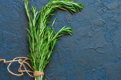 Close up of bunch of green fresh rosemary on a gray background. Royalty Free Stock Photography