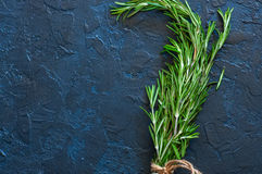 Close up of bunch of green fresh rosemary on a gray background. Royalty Free Stock Images