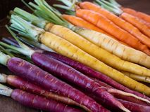 Close up of bunch of rainbow carrots prepped for cooking, sorted by color diagonally royalty free stock images