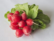 Close up bunch of red radishes on white background Royalty Free Stock Photography