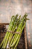 Fresh green asparagus. Close up of bunches of fresh green asparagus in wicker basket Stock Image