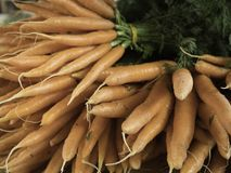 Bunches of carrots. Close up of bunches of orange carrots at the market Stock Photo