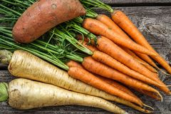 Close up of a bundle of carrots, parsnip and sweet potato royalty free stock photography