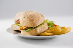 Close up of burgers with french fries in plate Royalty Free Stock Photo