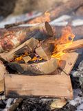 Close up of burning campfire. And firewoods in winter picnic royalty free stock photography