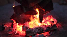 Close up of burning campfire at night stock video footage