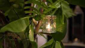 Close up of burning candle in glass jar is hanging on the branch of Palm tree. Close up of burning candle in a glass jar is hanging on the branch of the Palm stock footage