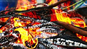 Close-up of burning fire flame with burnt firewood, Burning forest fire.