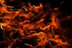 Close up of burning fire Stock Images