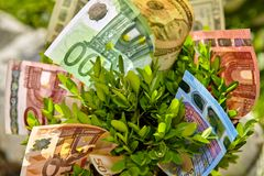 Close up of bush with money bills Royalty Free Stock Photos