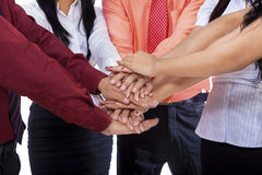 Close-up of business team join hands Stock Photo