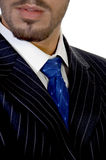 Close up of businessperson's tie Stock Photos