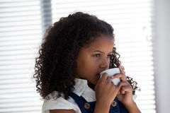 Close up of businesswoman with curly hair having coffee Stock Photos
