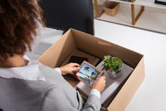 Businesswoman Packing Picture Frame In Cardboard Box royalty free stock images