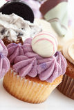 Close up of buttercream black currant cupcake with chocolate Royalty Free Stock Photo