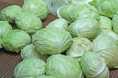 Cabbage in the market stock photos