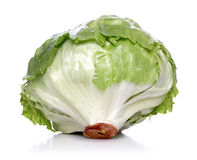 Close-up of cabbage on white background Stock Images