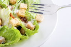 Close-up of Caesar Salad Stock Photos