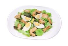 Close up of caesar salad with eggs. Stock Photos