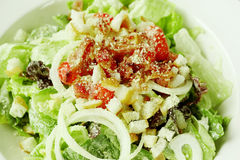 Close up of caesar salad in white bowl Royalty Free Stock Photography
