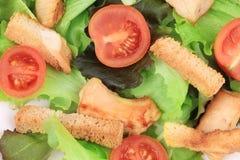 Close up of caesar salad. Stock Photos