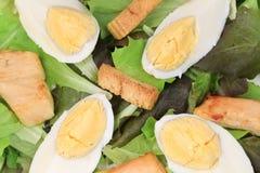 Close up of caesar salad. Royalty Free Stock Photos