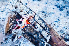 Close up of camp fire flames Stock Image