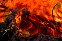 Close up of camp fire flames and fire stock image