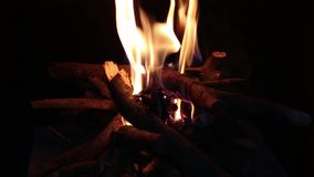 Close Up Camp Fire stock footage
