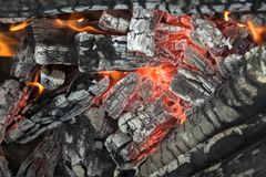 Close up of a campfire Royalty Free Stock Photo