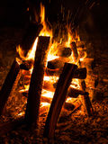 Close up of campfire Royalty Free Stock Photo