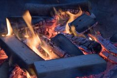 Close up of campfire royalty free stock image