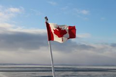 Close up Canadian flag in the wind on the sea in winter stock photo