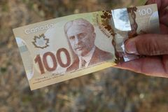 A close up of Canadian money- $100 bill. Canadian $100.00 currency. This picture can be used as a magazine front cover or billboard for anything to do with money royalty free stock photo