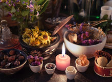 Close up of candle, herbs, flowers and berries Royalty Free Stock Photography
