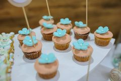 White blue turquoise cookies bunny stile and cupcakes. Close-up candy bar from white blue turquoise cookies bunny stile and cupcakes Royalty Free Stock Photos
